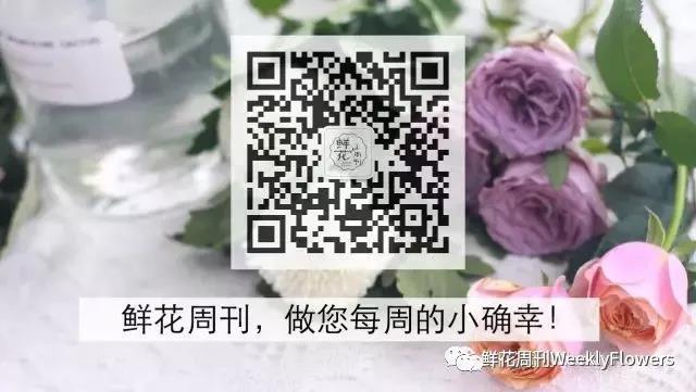 微信图片_20180326150840.jpg